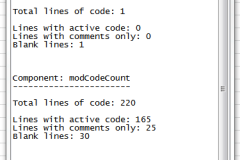 Text file with the results of the code count